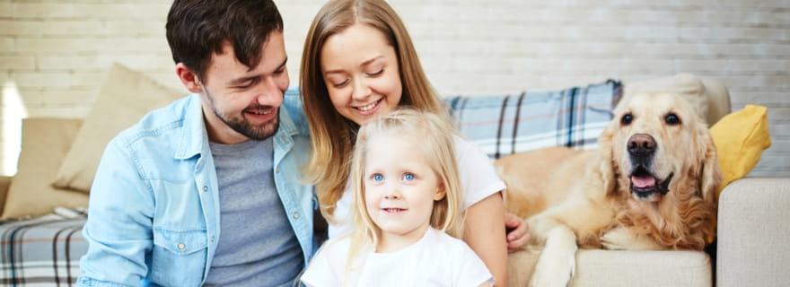 Alquileres y mascotas, ¿cómo actúa el seguro de hogar?